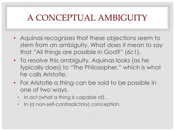 A Conceptual Ambiguity