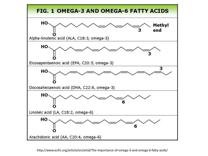 http://www.eufic.org/article/en/artid/The-importance-of-omega-3-and-omega-6-fatty-acids/