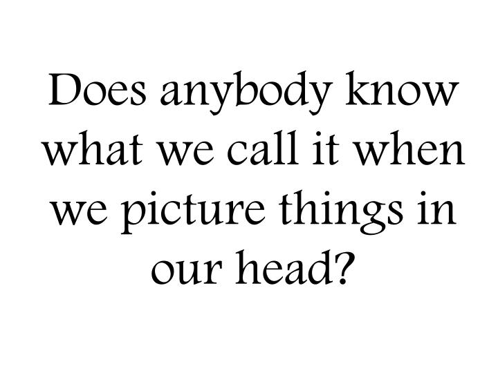 Does anybody know what we call it when we picture things in our head?