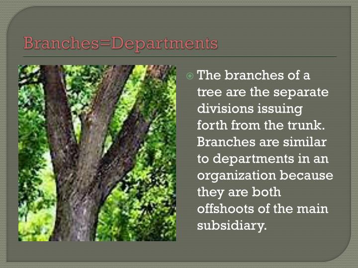 Branches=Departments
