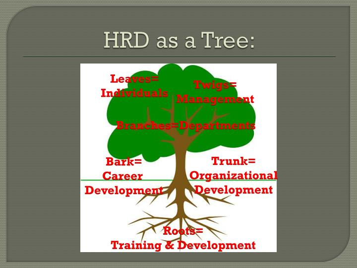HRD as a Tree: