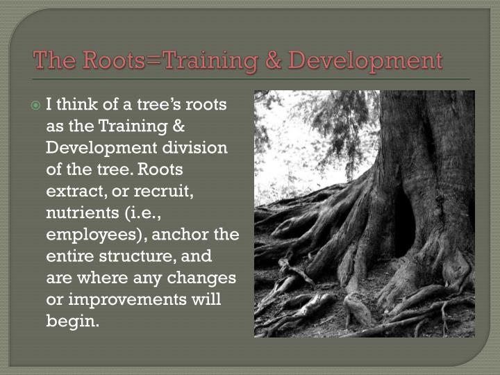 The Roots=Training & Development