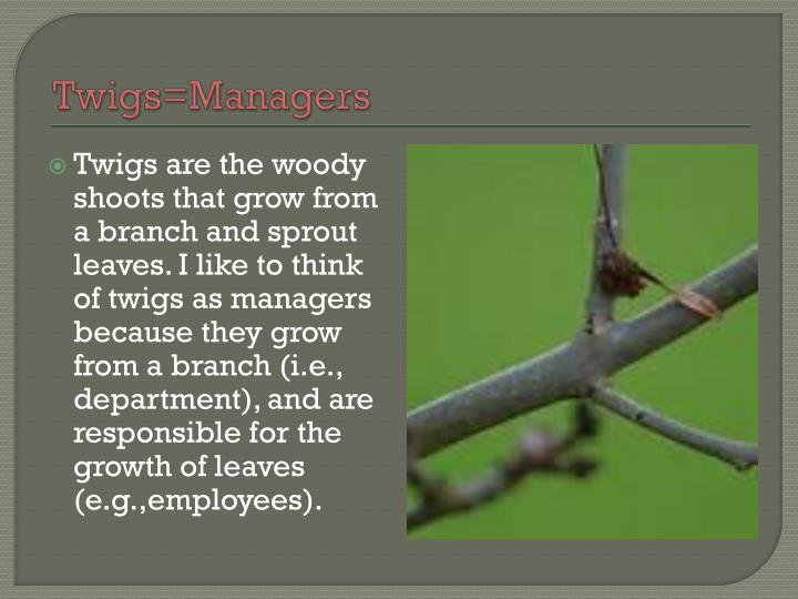 Twigs=Managers