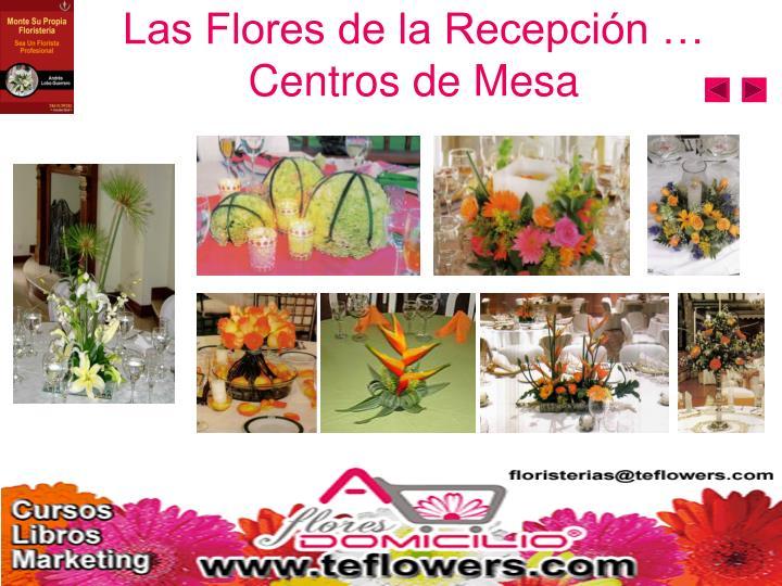 Las Flores de la Recepción …