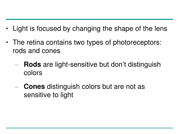 Light is focused by changing the shape of the lens