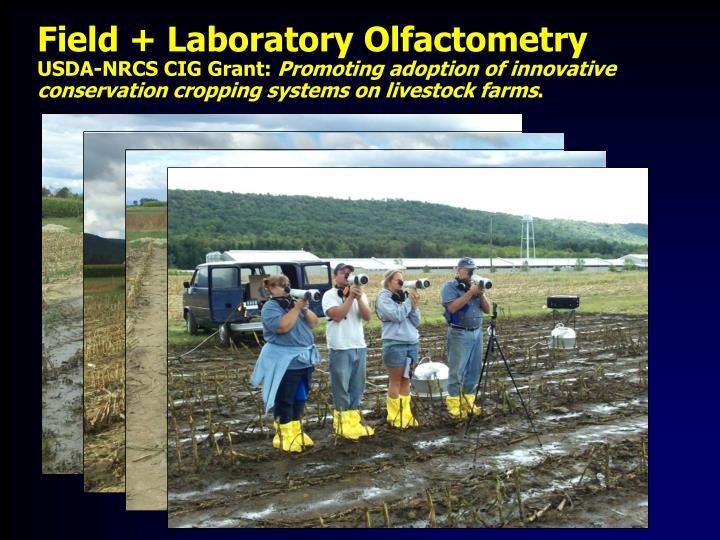 Field + Laboratory Olfactometry