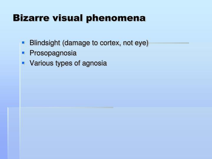 Bizarre visual phenomena
