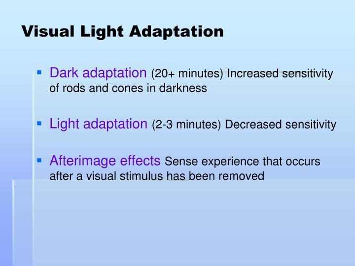 Visual Light Adaptation