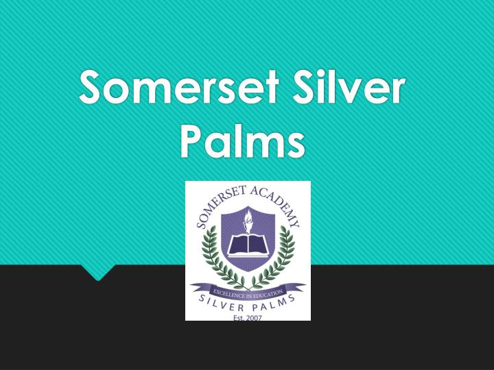 Somerset silver palms
