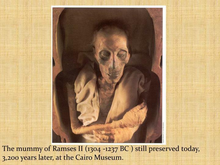 The mummy of Ramses II (