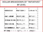 dollar breakdown of initiatives by level