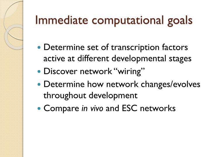 Immediate computational goals