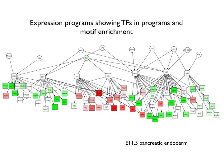 Expression programs showing TFs in programs and motif enrichment
