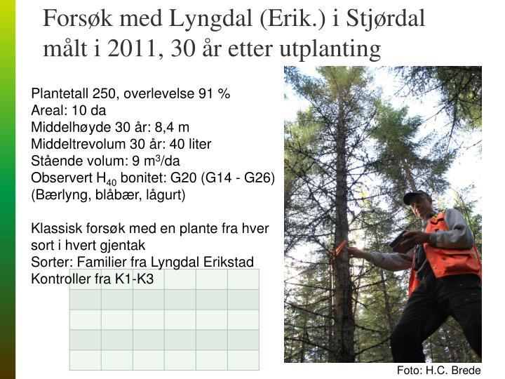 Forsøk med Lyngdal (Erik.) i Stjørdal