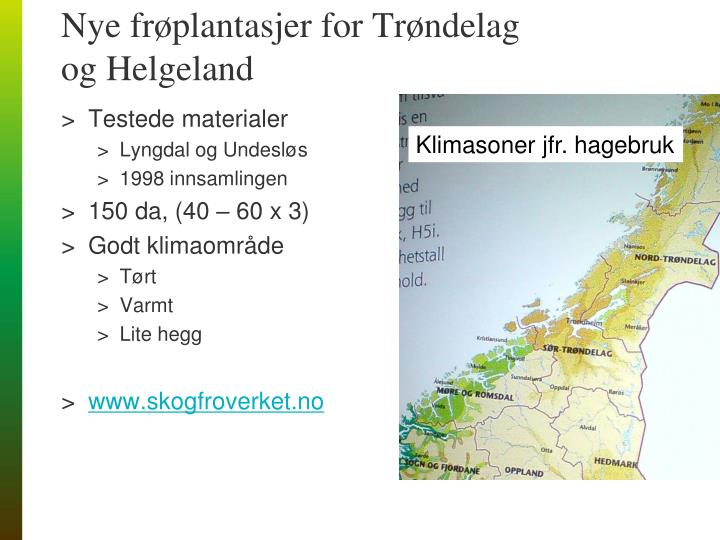 Nye frøplantasjer for Trøndelag og Helgeland