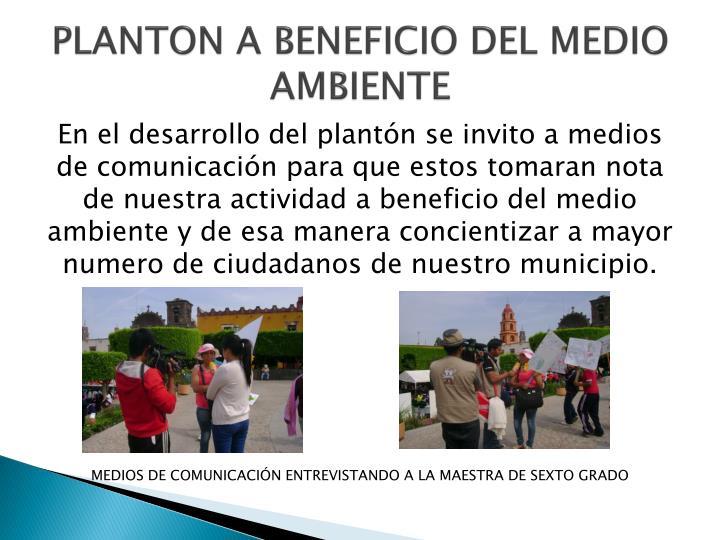 PLANTON A BENEFICIO DEL MEDIO AMBIENTE
