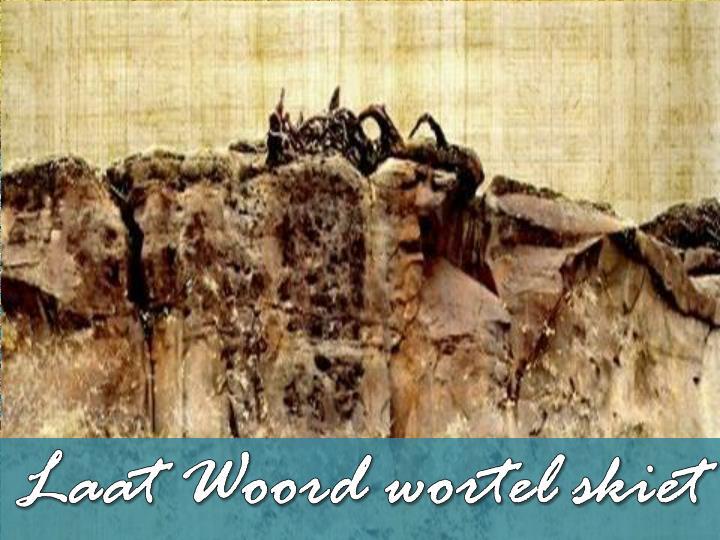 Laat Woord wortel skiet