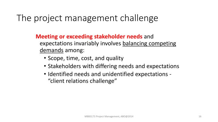 The project management challenge