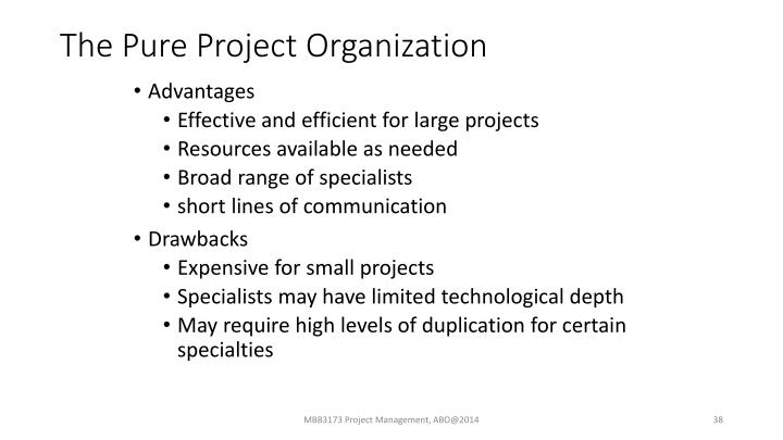 The Pure Project Organization