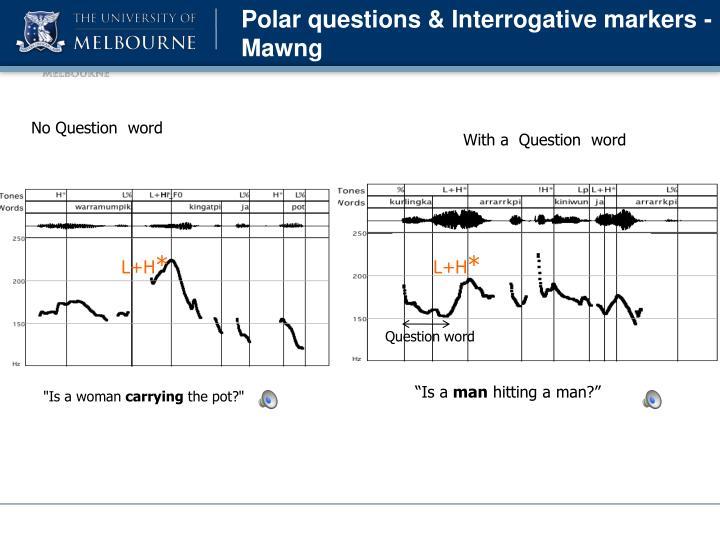 Polar questions & Interrogative markers -