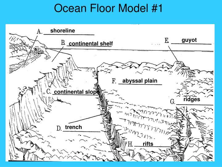 Ocean Floor Model #1