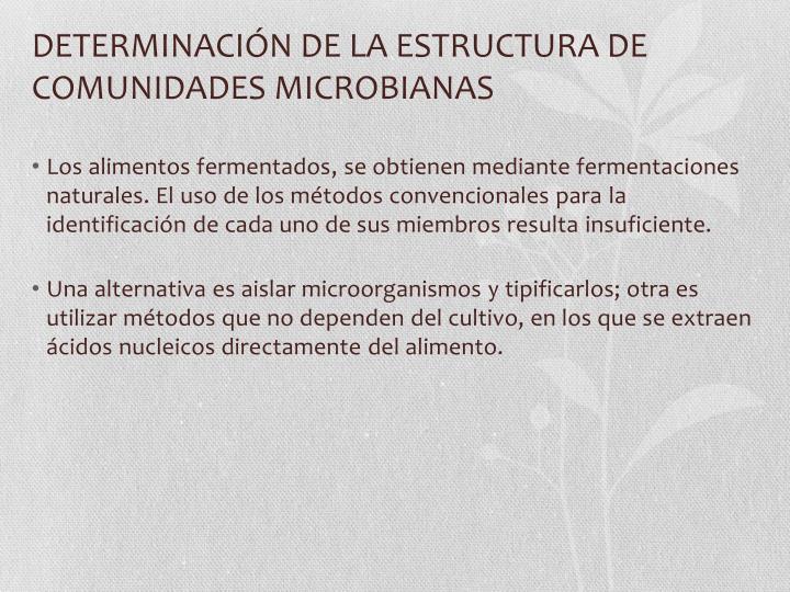 DETERMINACIÓN DE LA ESTRUCTURA DE