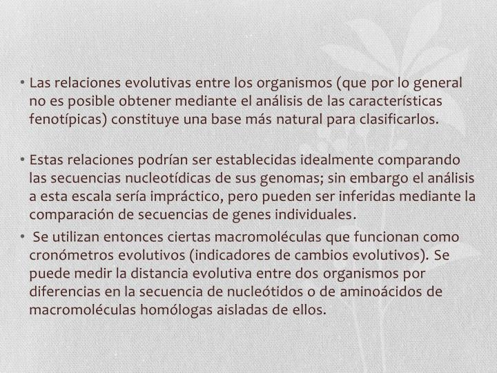 Las relaciones evolutivas entre los organismos (que