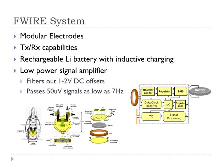 FWIRE System