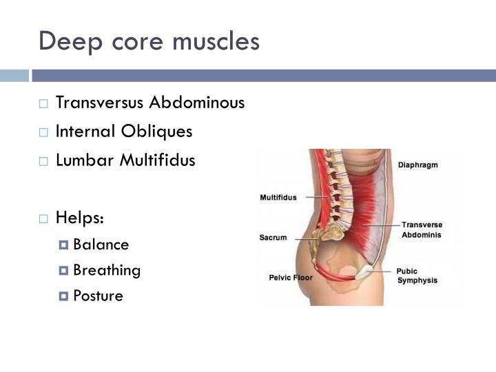 Deep core muscles