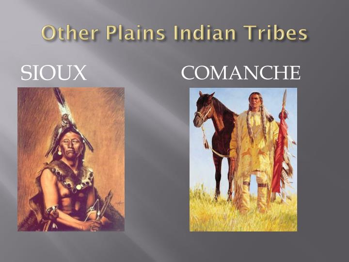 Other Plains Indian Tribes