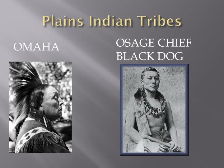 Plains Indian Tribes