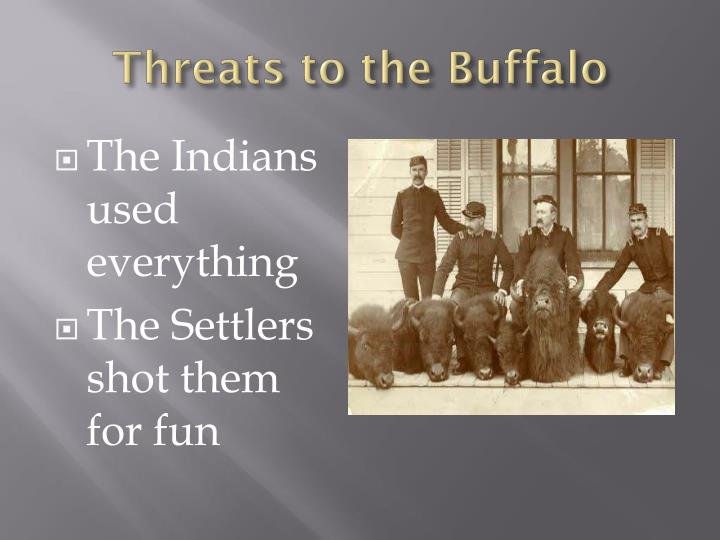Threats to the Buffalo