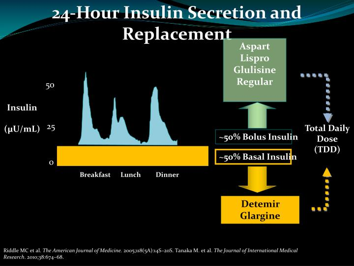 24-Hour Insulin Secretion and Replacement