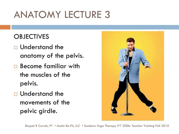 ANATOMY LECTURE 3