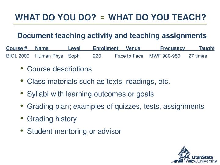 WHAT DO YOU TEACH?