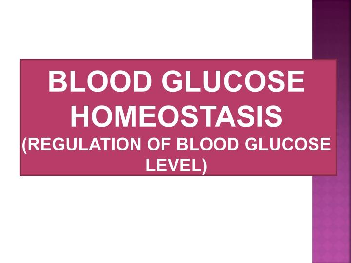 Blood glucose homeostasis regulation of blood glucose level