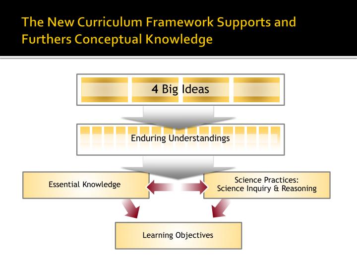 The New Curriculum Framework Supports and Furthers Conceptual Knowledge