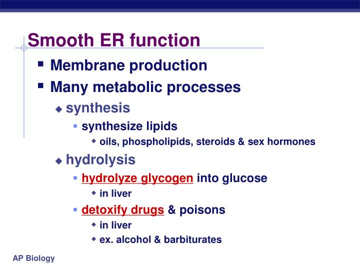 Smooth ER function
