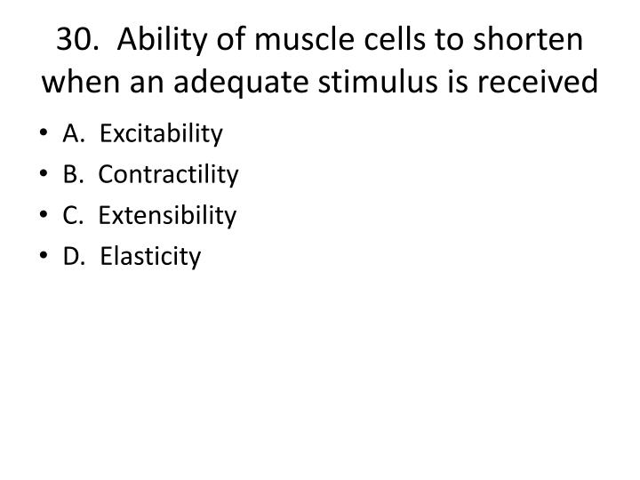30.  Ability of muscle cells to shorten when an adequate stimulus is received