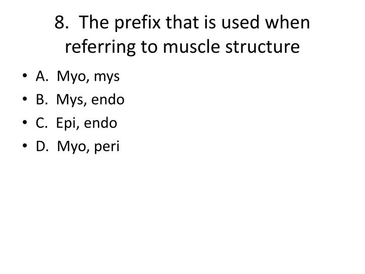 8.  The prefix that is used when referring to muscle structure