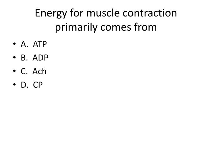 Energy for muscle contraction primarily comes from