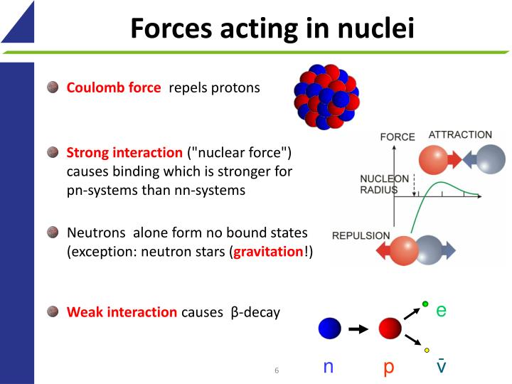 Forces acting in nuclei