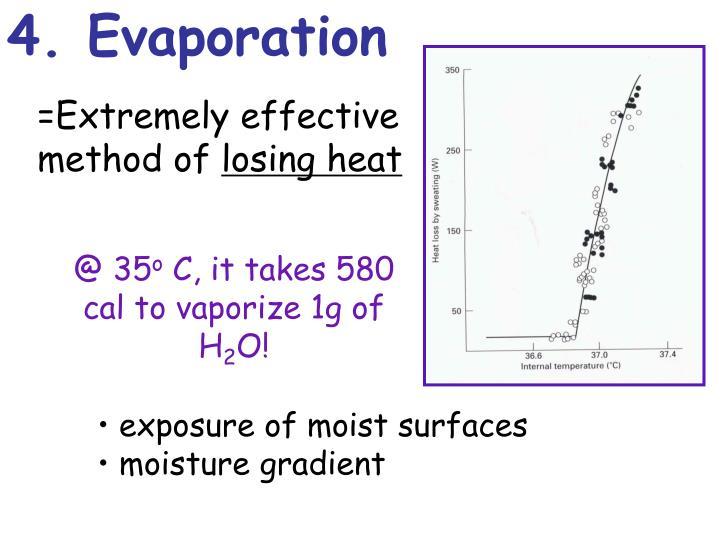 4. Evaporation
