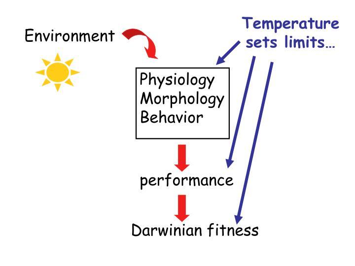 Temperature sets limits…
