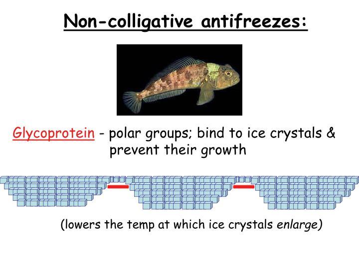 Non-colligative antifreezes:
