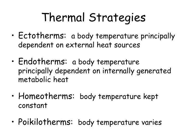 Thermal Strategies