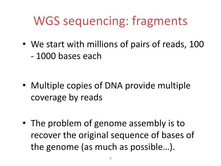 WGS sequencing: fragments