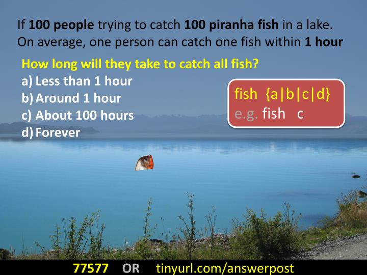 How long will they take to catch all fish?