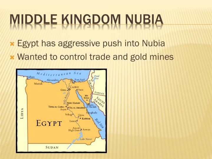 Egypt has aggressive push into Nubia