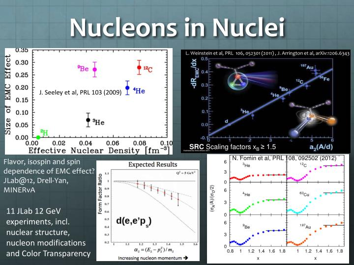 Nucleons in Nuclei